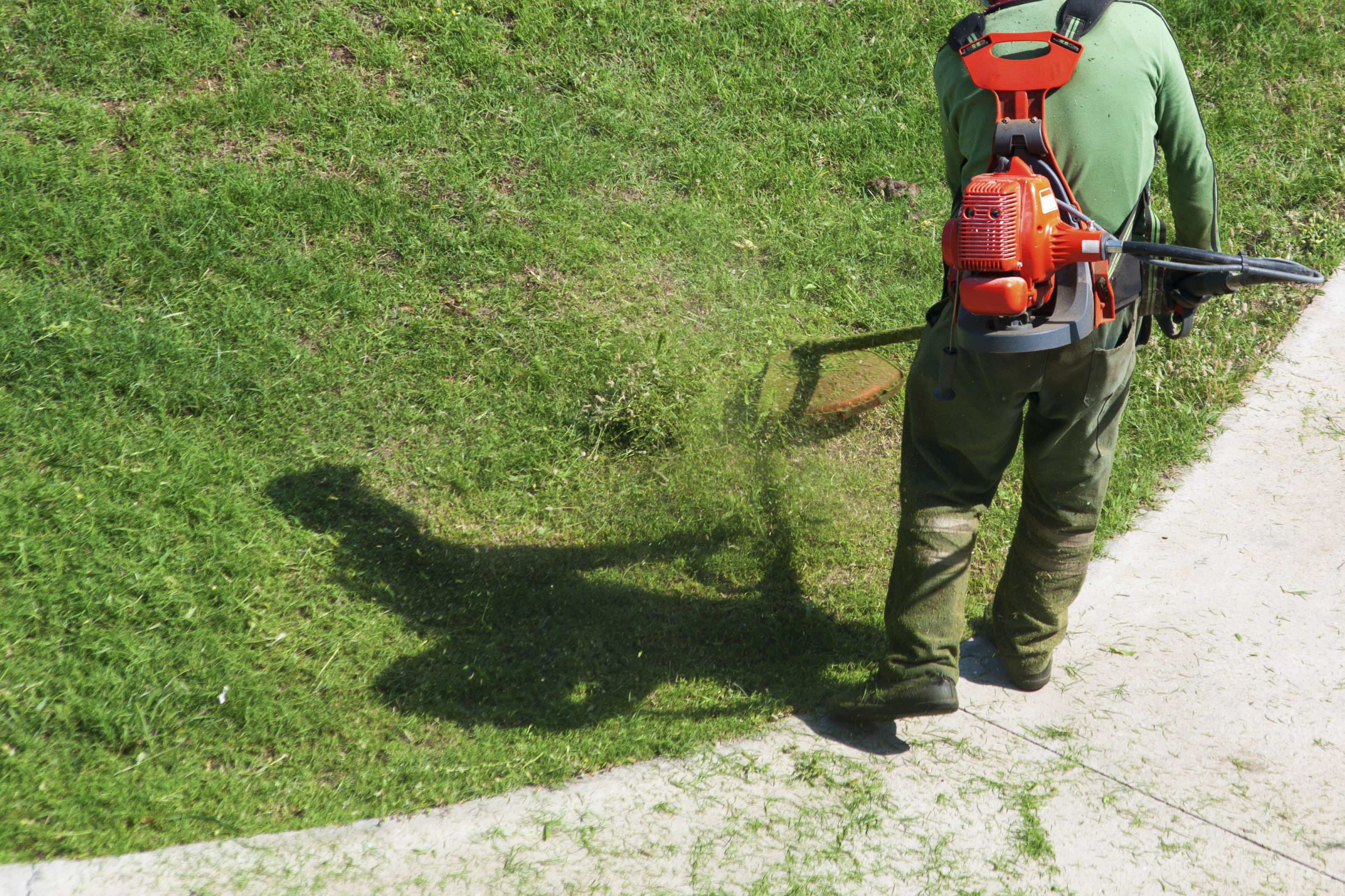 Who 39 s responsible the rental home lawn care debate for Lawn care and maintenance