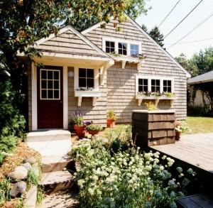 house-plants-steps