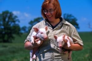 lady-holding-piglets