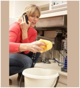 woman-on-phone-cleaning
